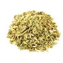 Hinojo semillas