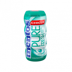 Mentos Pure Fresh Gum WinterGreen 10 Unid