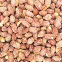 Cacahuete Piel Tostado SAGACOR Cubo 2.1 kg