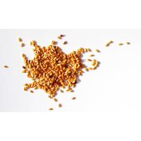 Lino semillas